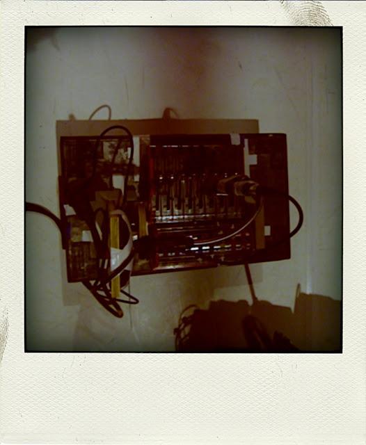 P1030045-pola